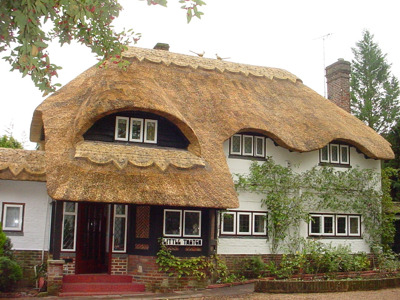 Four Counties Thatching